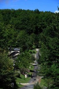 hameaux-du-perrier-activites-08